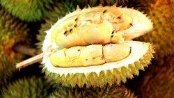 Запах дуриана сорвал вылет авиарейса в Индонезии
